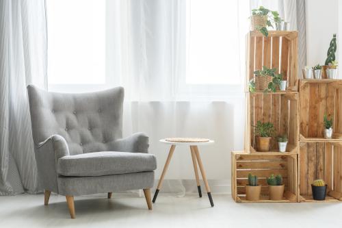 Angolo lettura con le piante