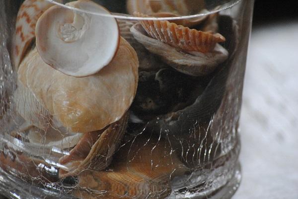 Arredamento in stile marinaro - decorazioni con conchiglie