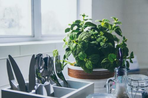 Abbellire la cucina con le erbe aromatiche