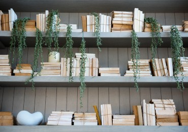How to decorate a bookshelf: 4 creative ideas